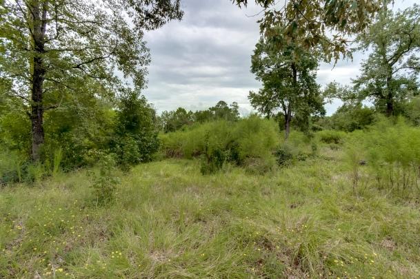 28110 Clint Neiddgk Rd, Magnolia, TX 77354-09